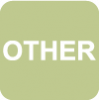"The word ""OTHER"" written in white on a light green background square."